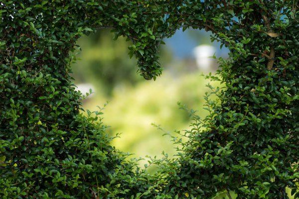 Klussen in je tuin