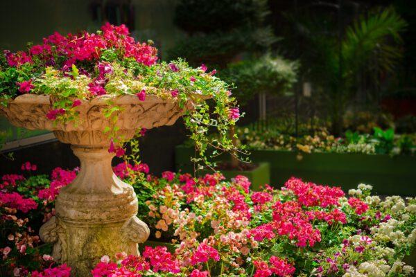 Zo zorg je voor een nette tuin